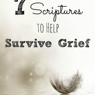 7 Scriptures to Help Survive Grief