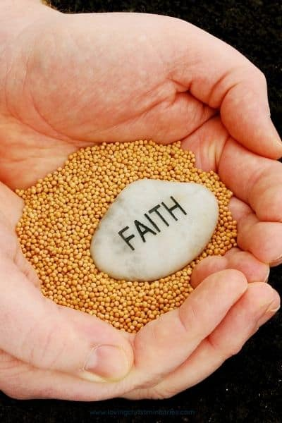 image of hands holding mustard seeds and a rock with Faith written on it